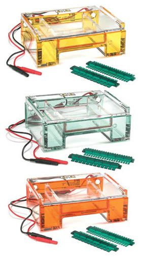 Owl* B2 EasyCast Mini Gel Horizontal Electrophoresis Systems from Thermo Fisher Scientific