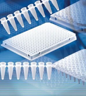 BRAND* Real Time PCR (qPCR) from BrandTech Scientific, Inc.