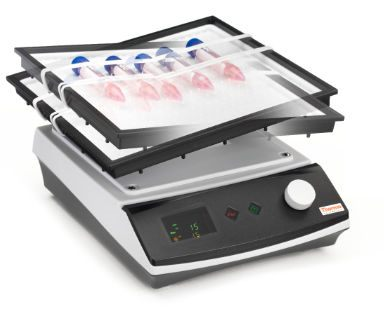 Thermo Scientific* Compact Digital Rockers from Thermo Fisher Scientific