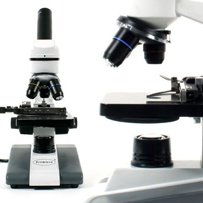 Premiere* MS Series Student Microscopes from C & A Scientific Co., Inc.