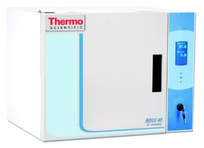 Thermo Scientific* Midi 40 Small Capacity CO2 Incubators from Thermo Fisher Scientific