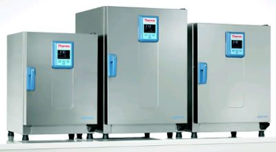 Heratherm* Large Capacity General Protocol Mechanical Incubators from Thermo Fisher Scientific